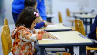 Mezinárodní den vzdělání – 24. ledna